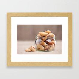Brazil nuts from Bertholletia excelsa Framed Art Print