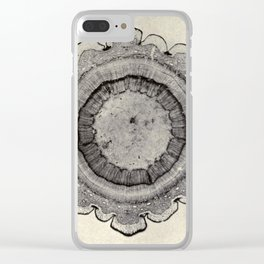 Spruce Branch Clear iPhone Case