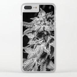 Haze Berry Clear iPhone Case