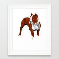 pitbull Framed Art Prints featuring Pitbull by Styleuniversal