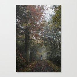 Minnewaska State Park Canvas Print