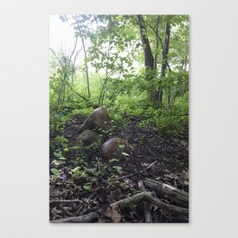 Rocks in the Woods Canvas Print
