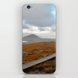 Bleak Path iPhone Skin