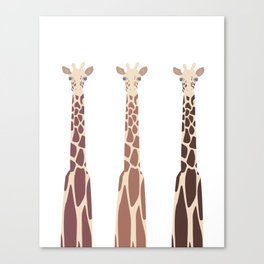 Triple Giraffes Canvas Print