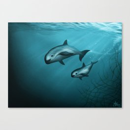 Treacherous Waters - Vaquita Porpoise Art, Original Digital Painting by Amber Marine, Copyright 2015 Canvas Print