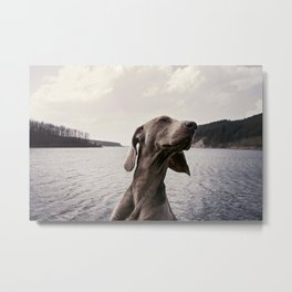 Vizla The Feeling Metal Print