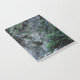 Quiet erosion Notebook