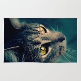 Vintage Yellow-Eyed Cat looking up Above Rug