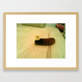 Caterpillar Birthday Party (The Tiny Crown) Framed Art Print