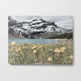 Merlin Lake Metal Print