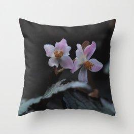 Wildflower Series - Christchurch Botanical Throw Pillow