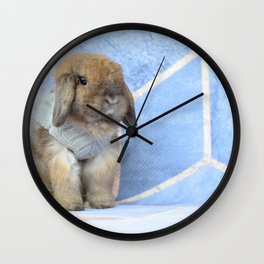 Bunny posing Wall Clock