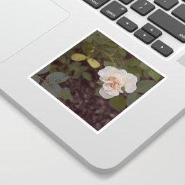 The Last Blossom (Autumn Rose) Sticker