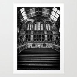 History Museum London Art Print