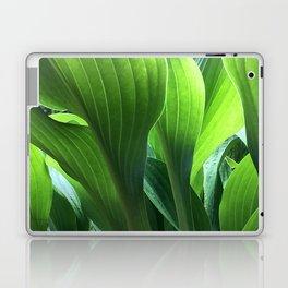 Hosta Forest Laptop & iPad Skin