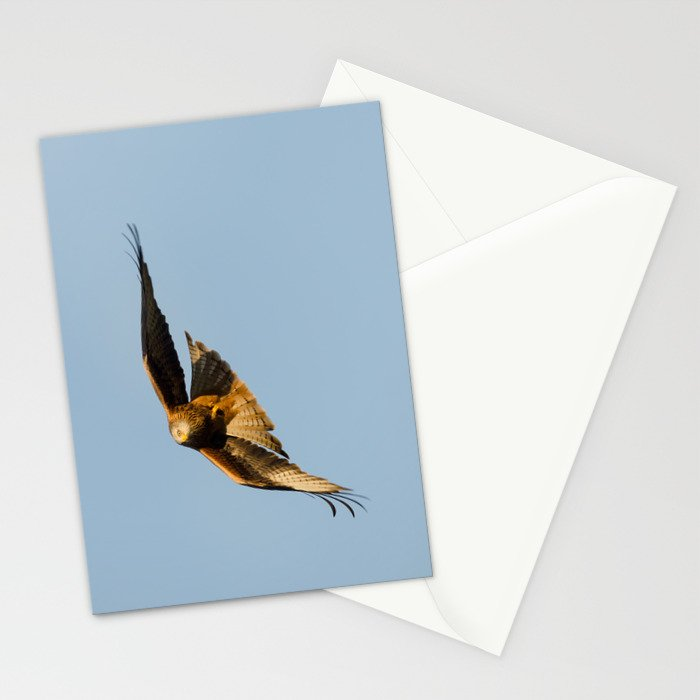 Red kite Stationery Cards