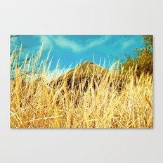 summer hut Canvas Print