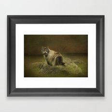A Game of Cat and Mouse Framed Art Print