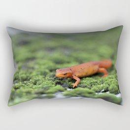 Orange Salamander Travels Rectangular Pillow