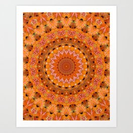 Orange kaleidoscope Art Print
