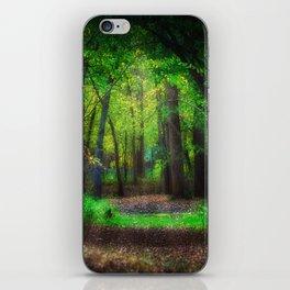 Fall Splendor 2 iPhone Skin