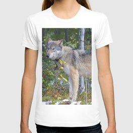 Wolf encounter in Jasper National Park T-shirt