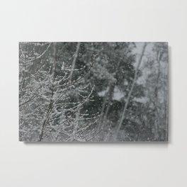 Snowy Day 1 Metal Print