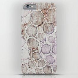 Muddy River iPhone Case