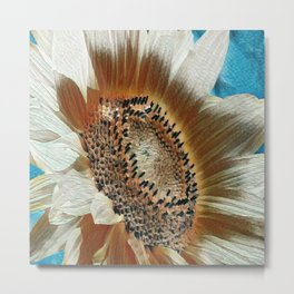 Cream Colored Sunflower Metal Print