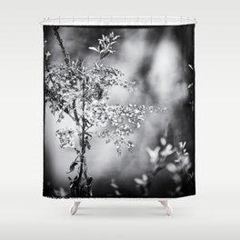 Grunge Film Noir Dried Plants Nature Image Shower Curtain