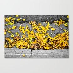 Guttered Fall Canvas Print