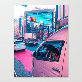 Fluffy Driver Canvas Print