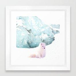 Arctic Fox Framed Art Print