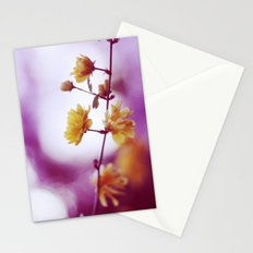 May. Stationery Cards
