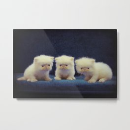 Hime's babies Metal Print