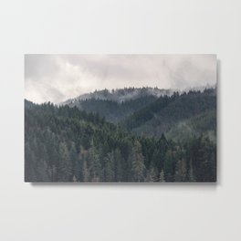 Pacific Northwest Forest - Nature Photography Metal Print