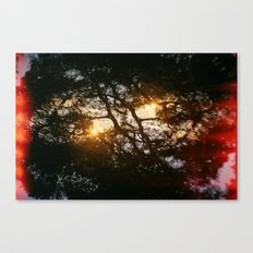 Fractal Trees at Sunset Canvas Print