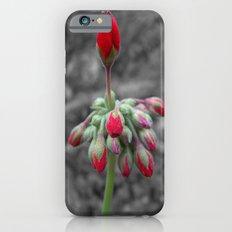 Geranium iPhone 6s Slim Case