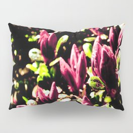 Painted Rose Bloom Pillow Sham