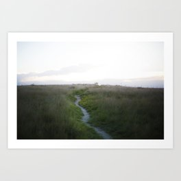 Blue Bird Trail - Amarillo, Tx Art Print