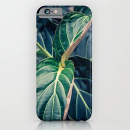Mesmerized by Leaves iPhone Case