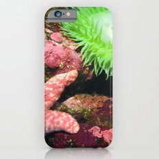 Not Easy Being Green iPhone 6s Slim Case