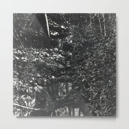 Small Creek Metal Print