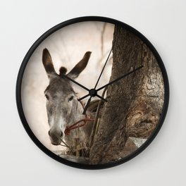 The curios donkey Wall Clock