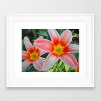 tulips Framed Art Prints featuring Tulips by Vitta