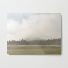 Yellowstone II Metal Print