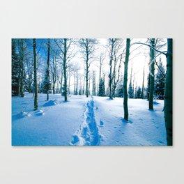Snowshoeing Adventure Canvas Print