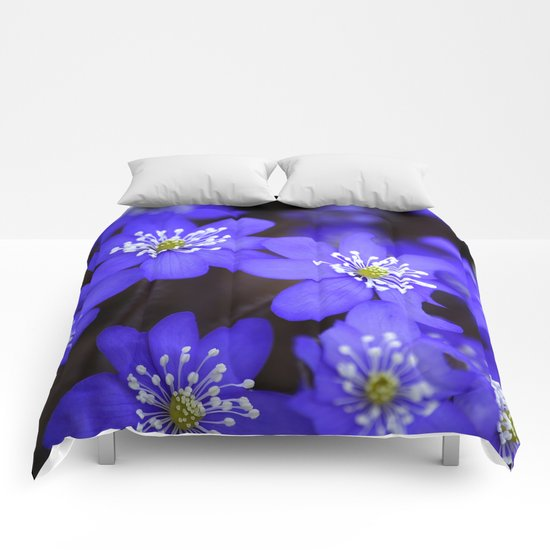 First Spring Flowers  Comforters