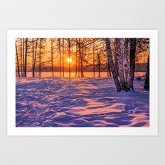 view through the pines Art Print