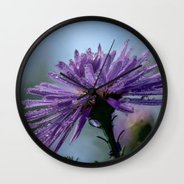 Wet aster in the garden Wall Clock